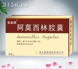 阿莫西林胶囊24粒